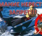 Всё о запрете в Калининградской области в период нереста-2020!